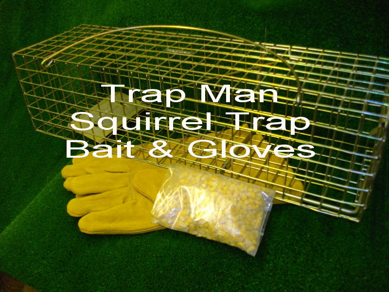 grey squirrel trap with bait and gloves at a special price